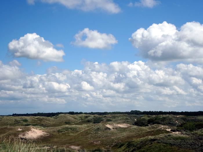 Panoramablick über das nordholländische Dünenreservat.