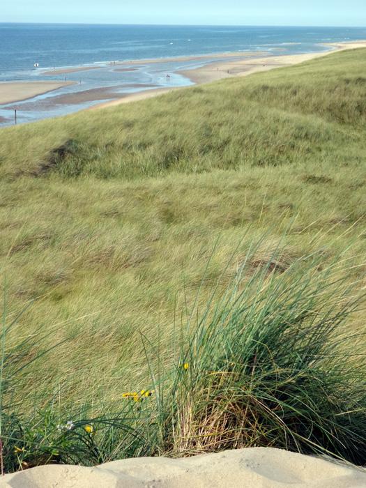 Blick von den hohen Dünen auf die Nordsee.
